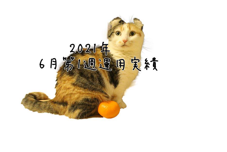 2021年6月第1週運用実績